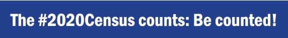 census_graphic_horiz_blue