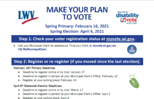 Preview of the Make Your Plan to Vote document